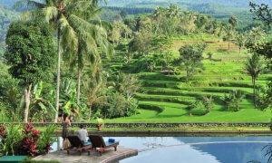 Ijen Resort Villas