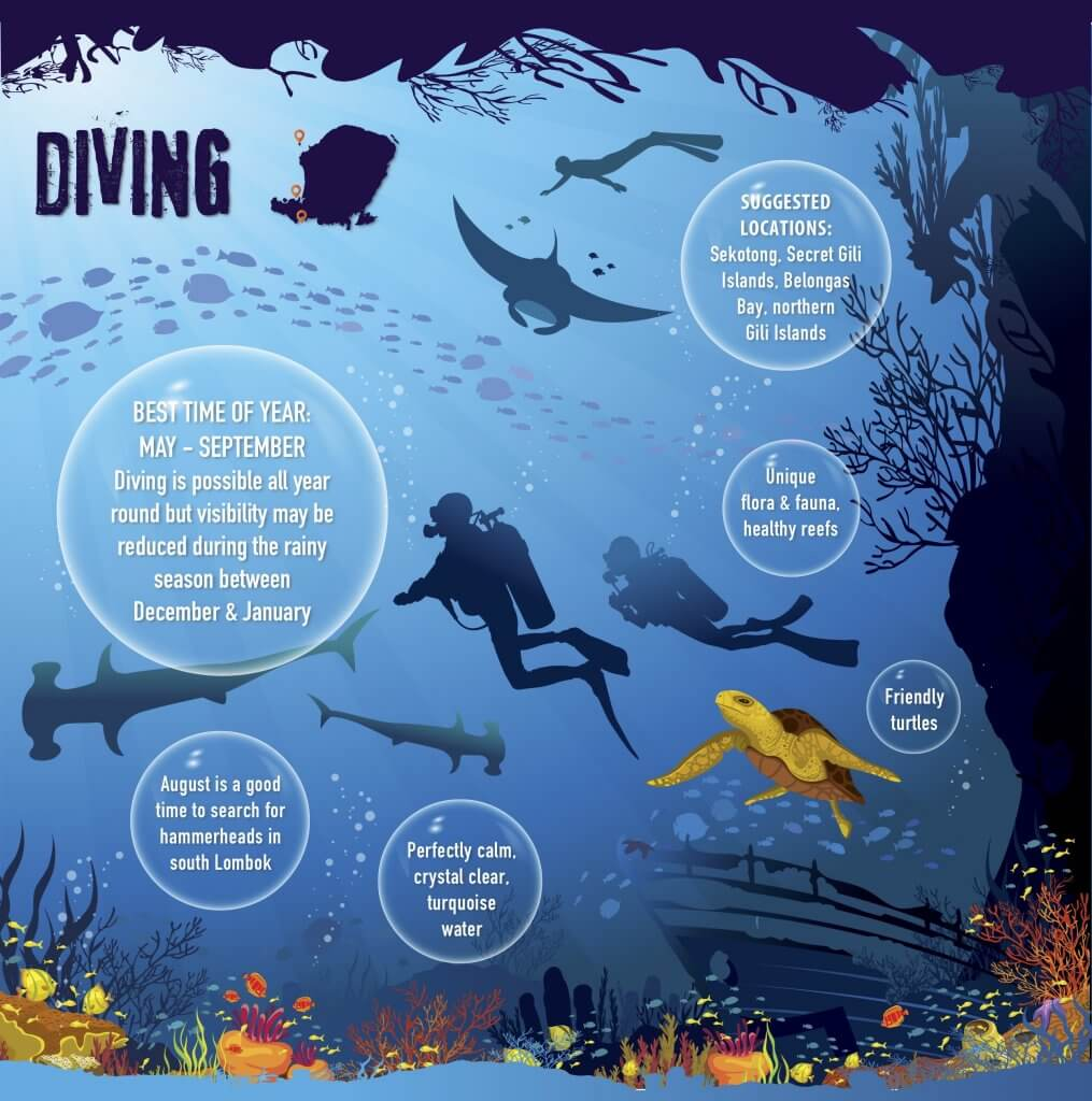 Diving spot in Gili