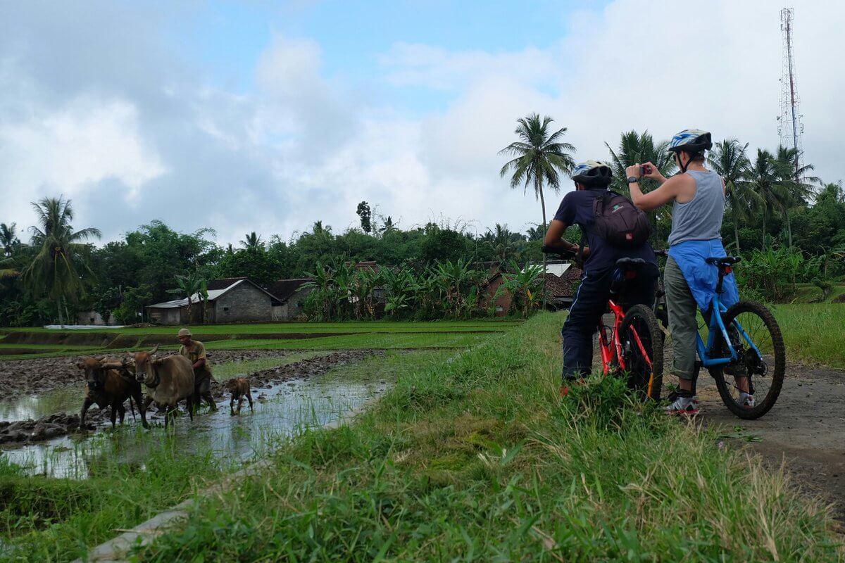 Eco Cycling Tour
